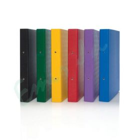 TCB 2 RING BINDER ASSORTED COLORS