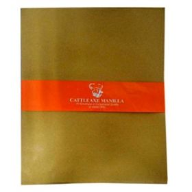 DECENT MANILLA BROWN ENVELOPE 10X8